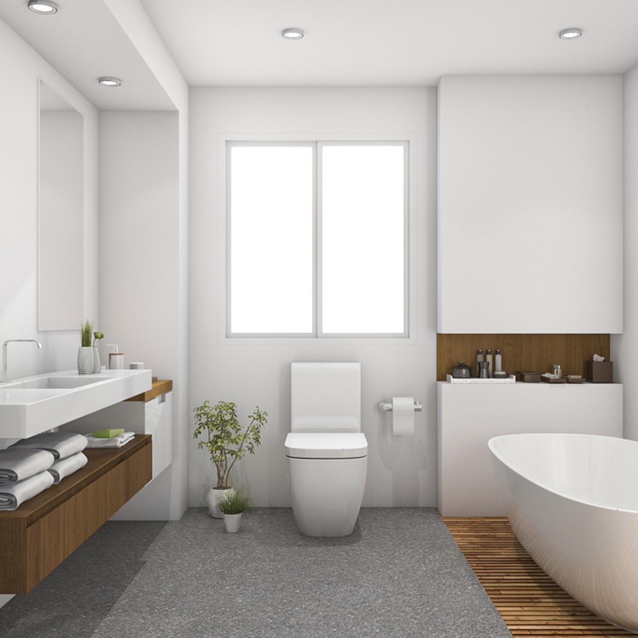 Basin & WC